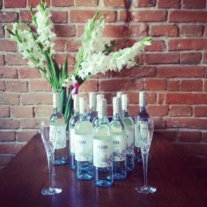 vinho v2