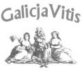 logo-galicia vitis
