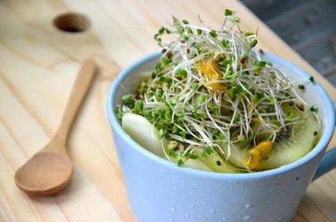 broccoli-sprouts-1977721_960_720